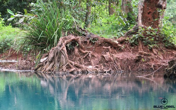 cave-diving-locations-thailand_5549